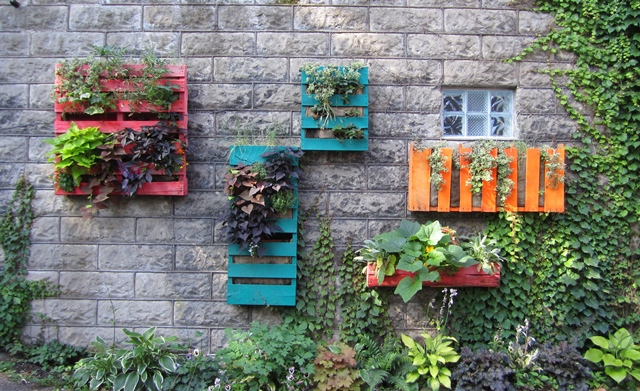 Upcycle: Wall Gardens